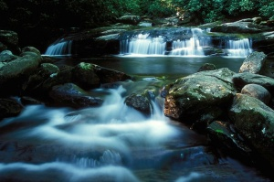 0704071935413bp--smoky_mountain_stream